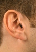 digital-hearing-aids-belllingham-wa